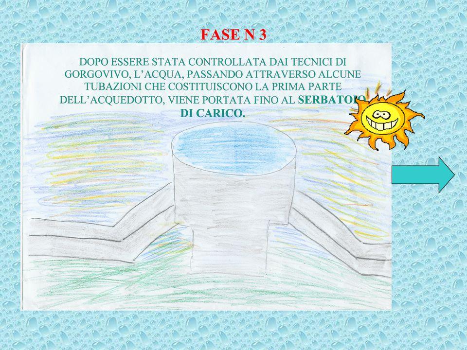 FASE N 3