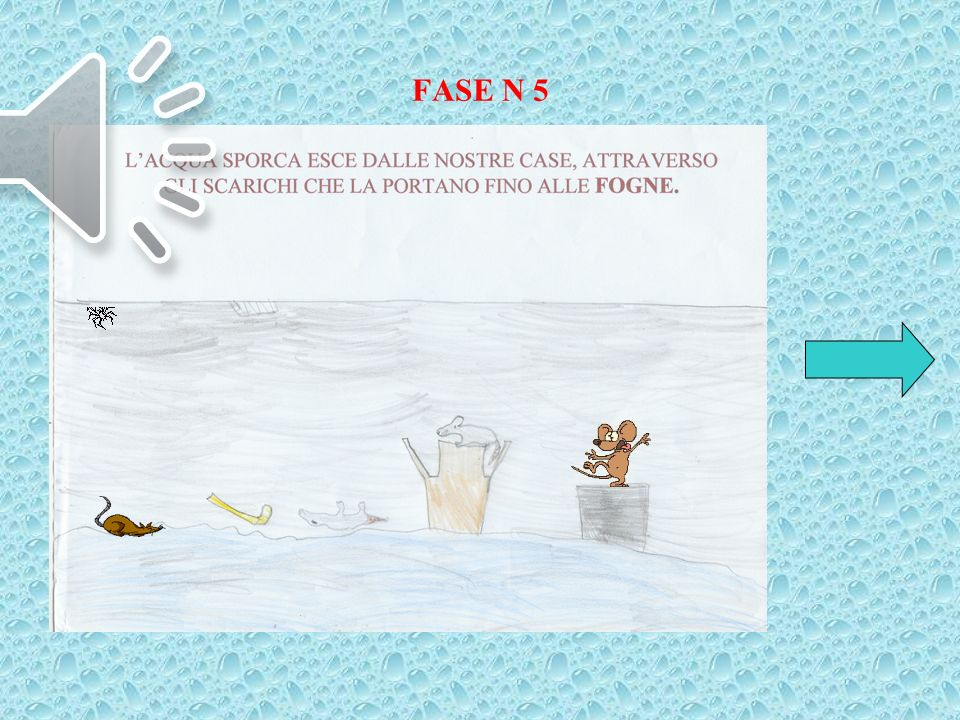 FASE N 5