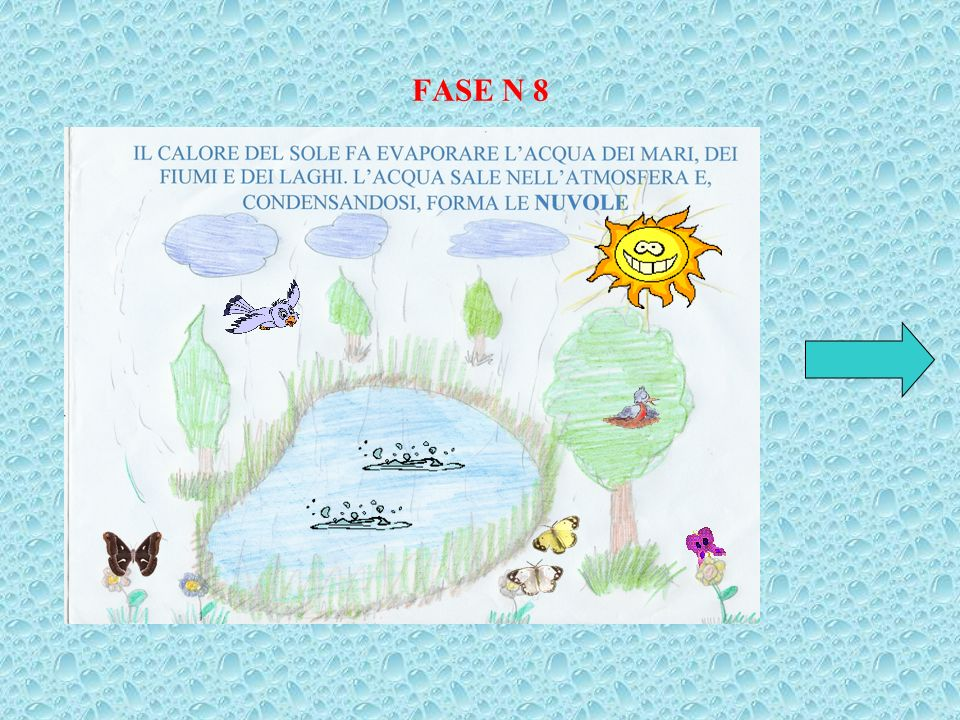 FASE N 8