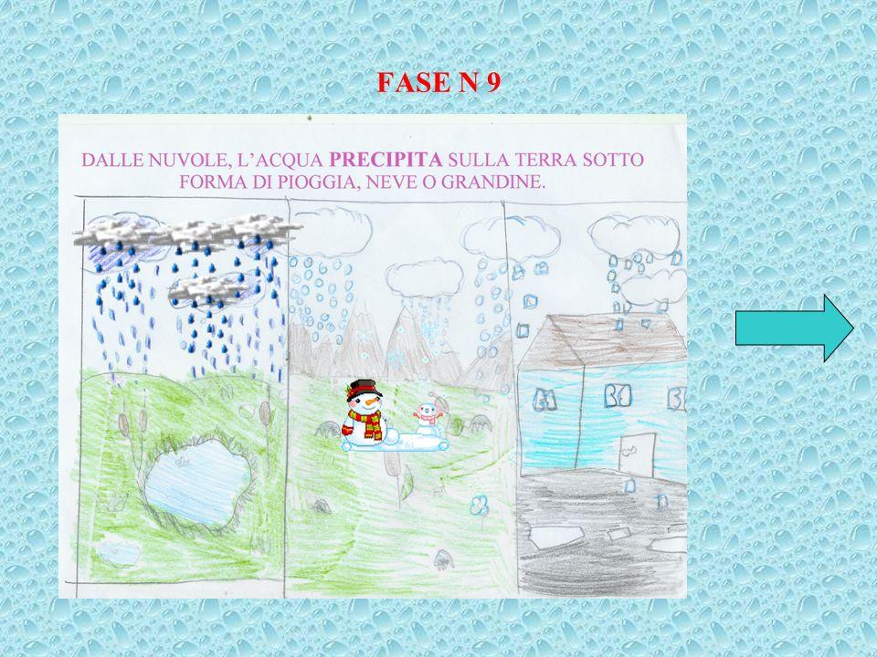 FASE N 9
