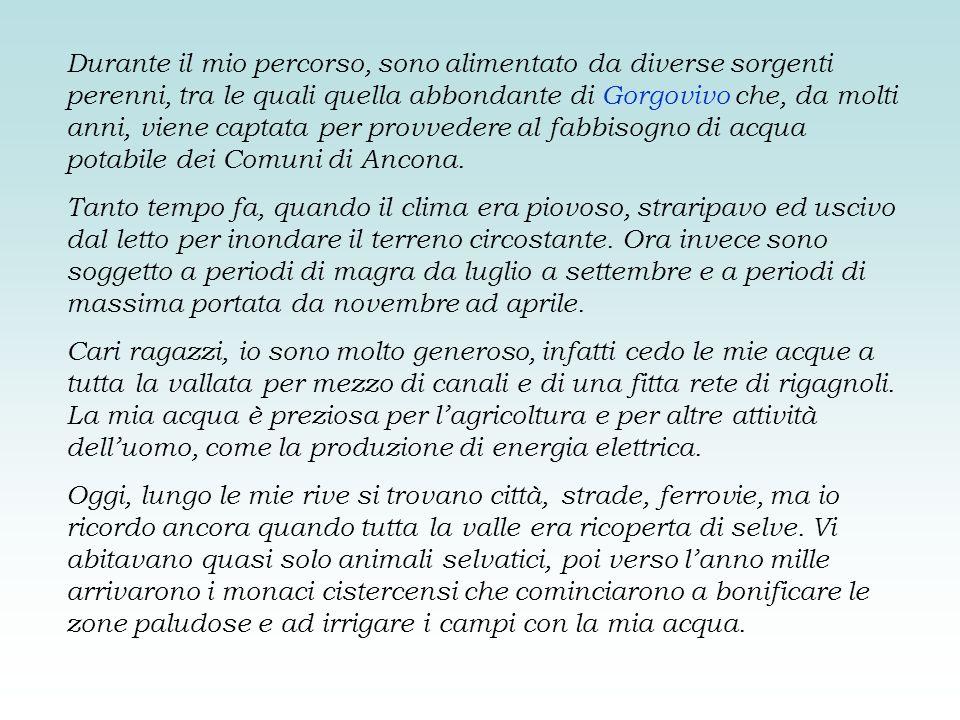 Durante il mio percorso, sono alimentato da diverse sorgenti perenni, tra le quali quella abbondante di Gorgovivo che, da molti anni, viene captata per provvedere al fabbisogno di acqua potabile dei Comuni di Ancona.