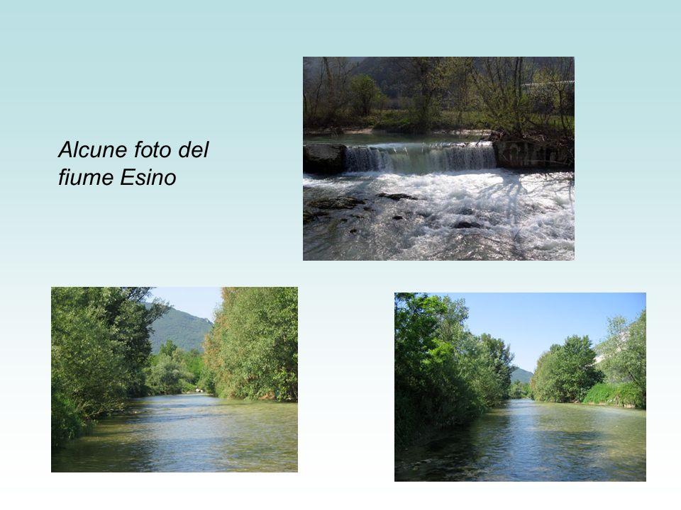 Alcune foto del fiume Esino