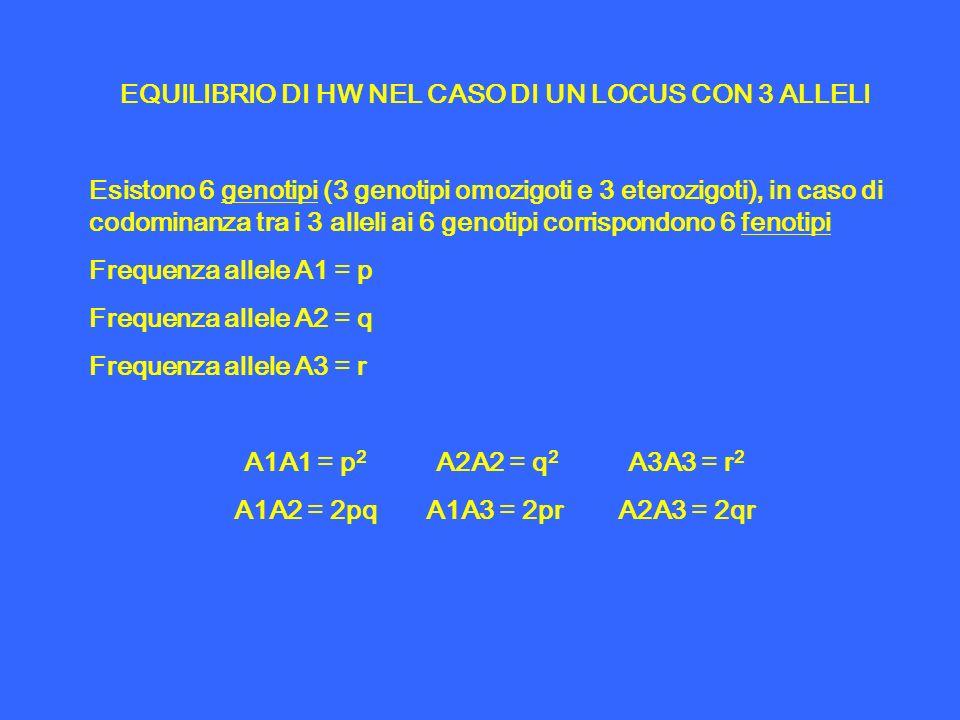 EQUILIBRIO DI HW NEL CASO DI UN LOCUS CON 3 ALLELI