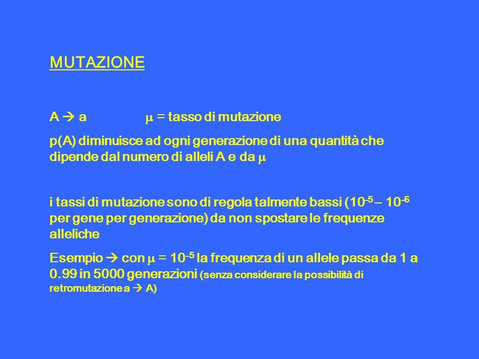 MUTAZIONE A  a m = tasso di mutazione