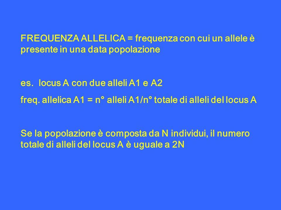 FREQUENZA ALLELICA = frequenza con cui un allele è presente in una data popolazione