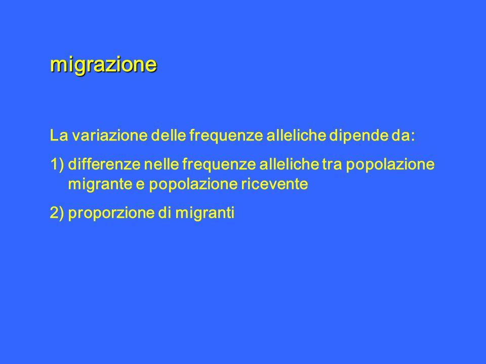 migrazione La variazione delle frequenze alleliche dipende da: