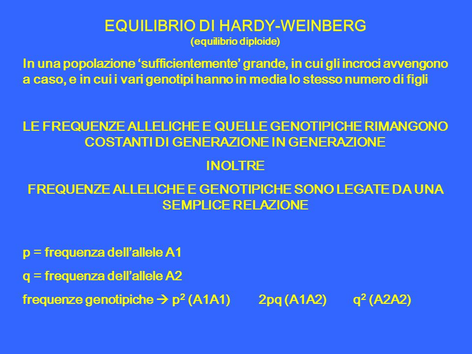 EQUILIBRIO DI HARDY-WEINBERG (equilibrio diploide)