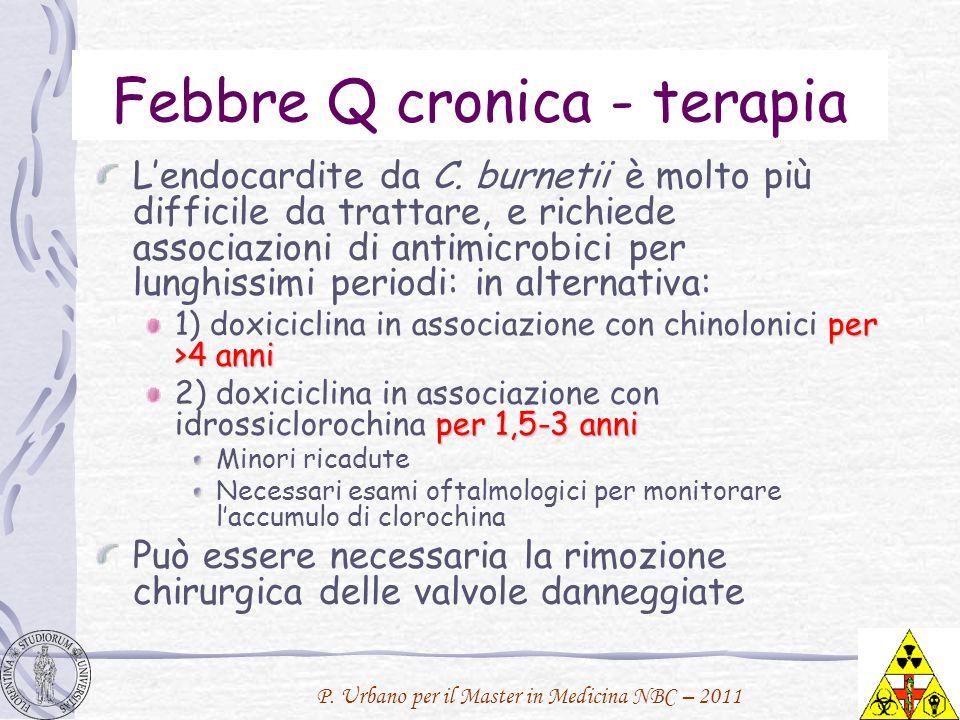 Febbre Q cronica - terapia