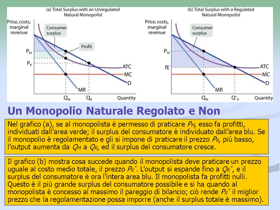 Un Monopolio Naturale Regolato e Non