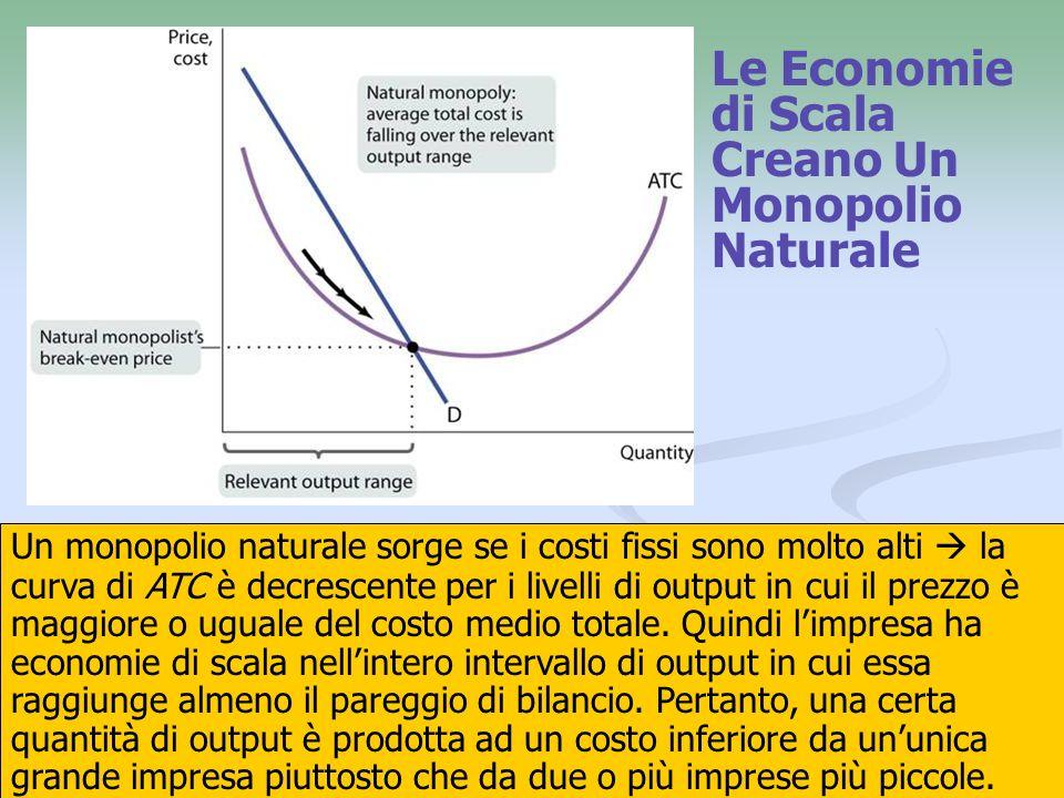Le Economie di Scala Creano Un Monopolio Naturale