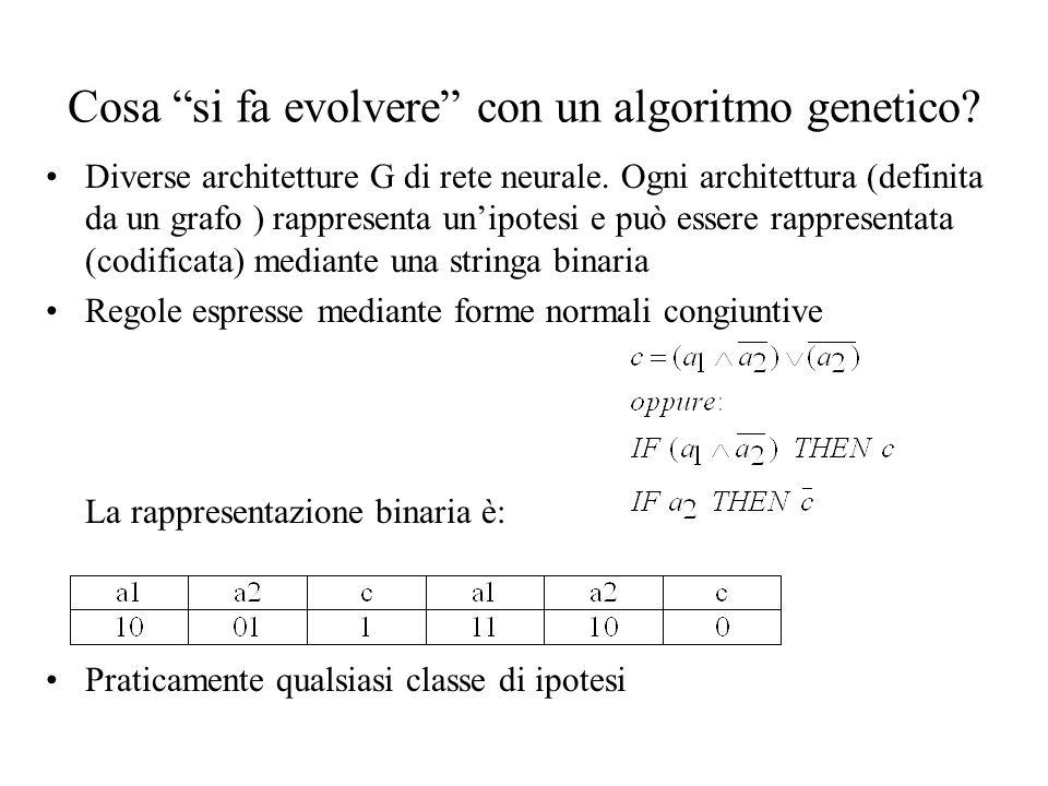 Cosa si fa evolvere con un algoritmo genetico