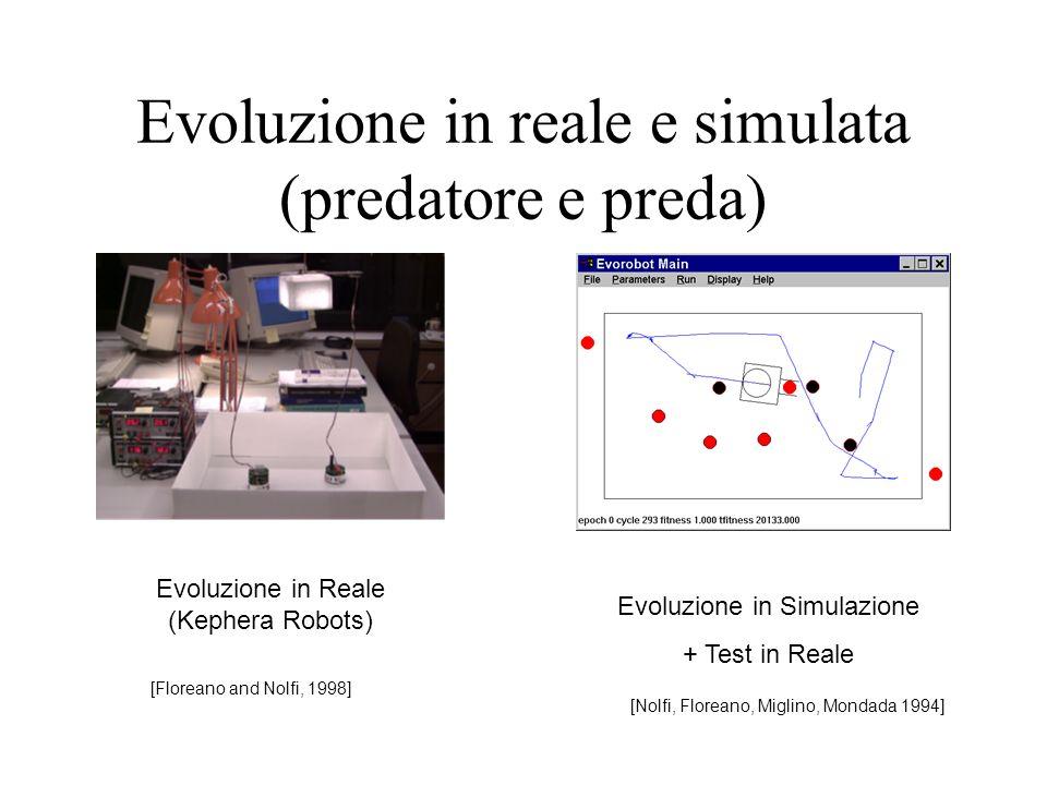 Evoluzione in reale e simulata (predatore e preda)