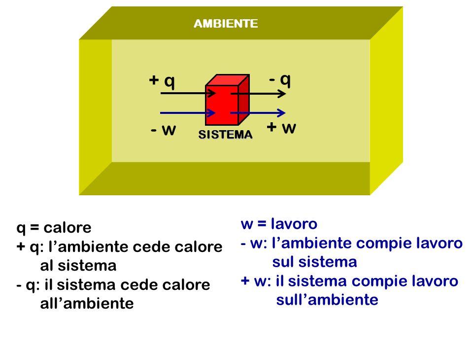 - q + q + w - w w = lavoro q = calore - w: l'ambiente compie lavoro