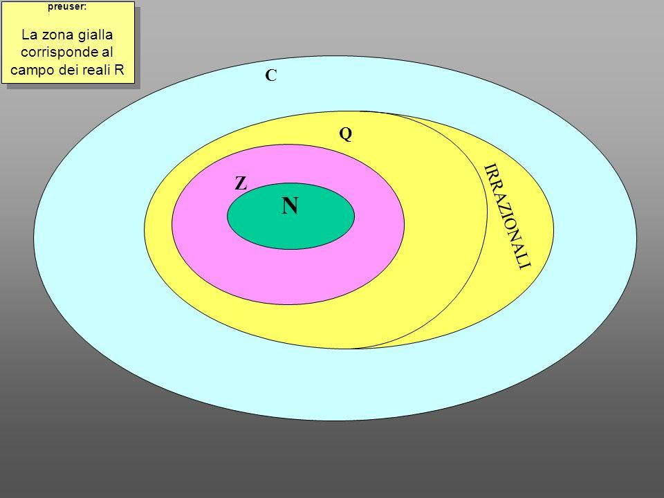 La zona gialla corrisponde al campo dei reali R