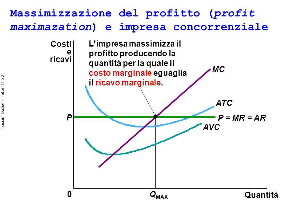 massimizzazione del profitto 2