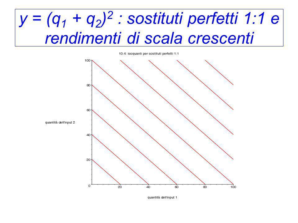 y = (q1 + q2)2 : sostituti perfetti 1:1 e rendimenti di scala crescenti