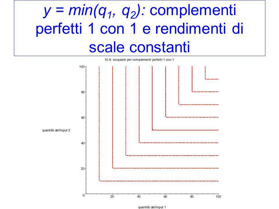 y = min(q1, q2): complementi perfetti 1 con 1 e rendimenti di scale constanti