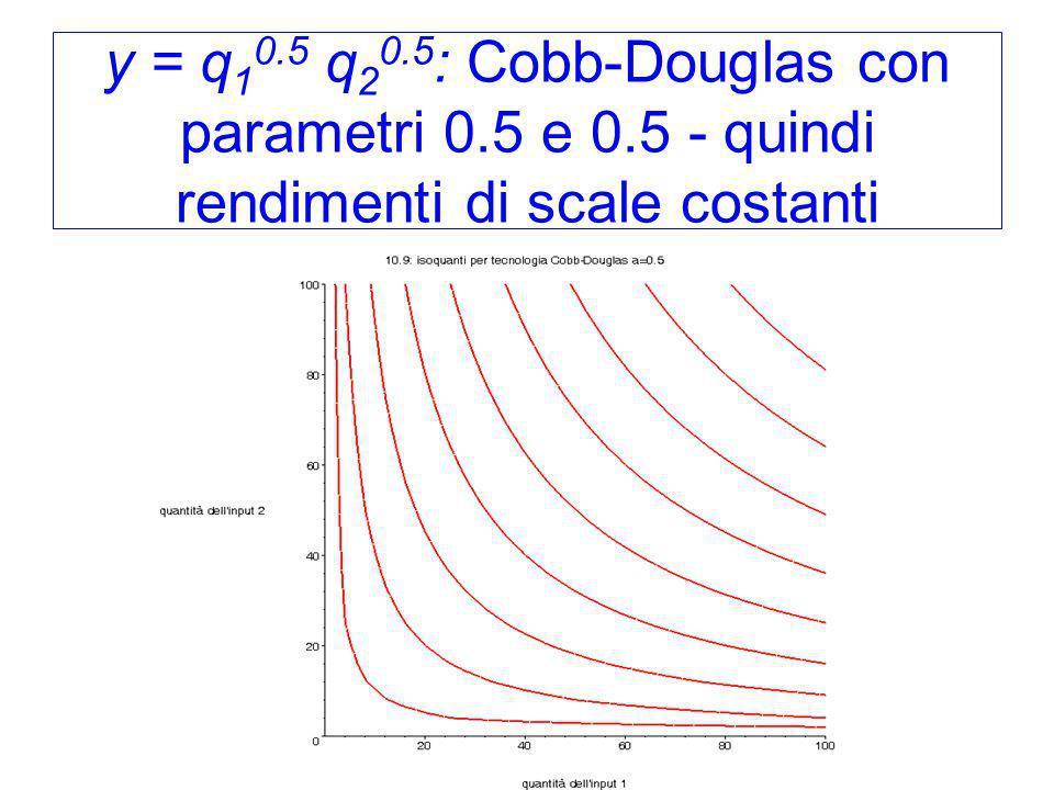 y = q10. 5 q20. 5: Cobb-Douglas con parametri 0. 5 e 0