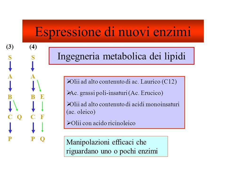Espressione di nuovi enzimi
