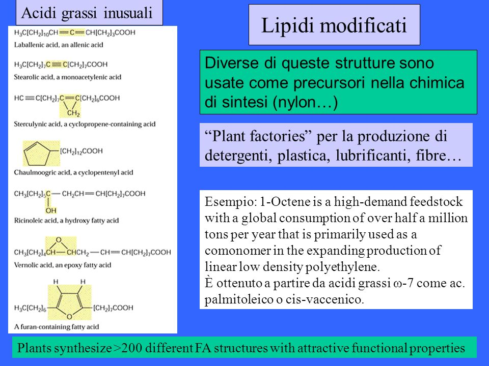Lipidi modificati Acidi grassi inusuali