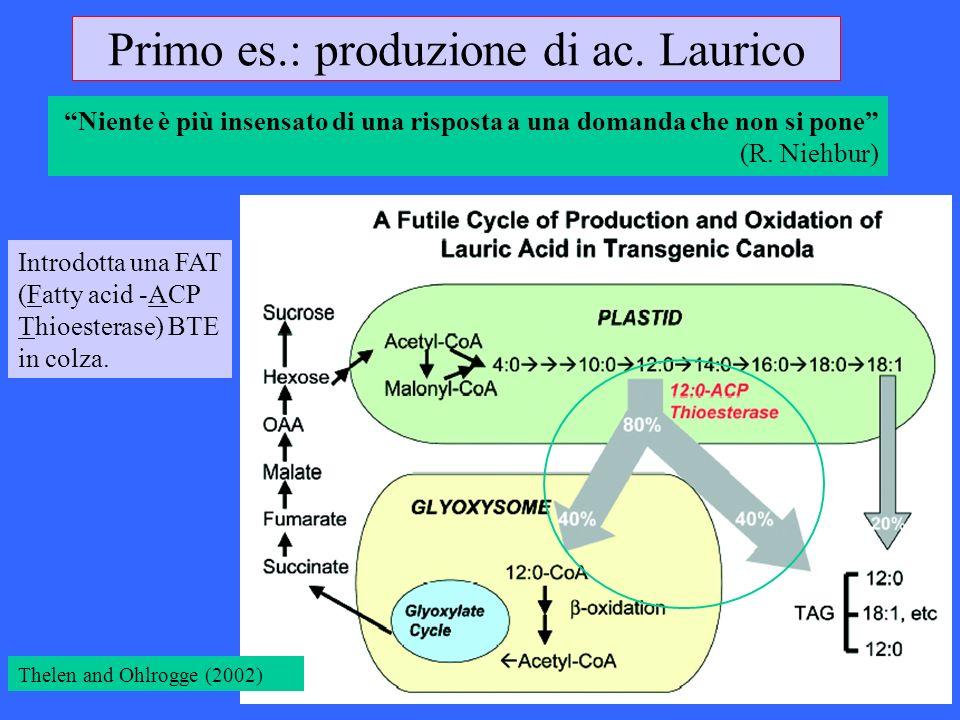Primo es.: produzione di ac. Laurico