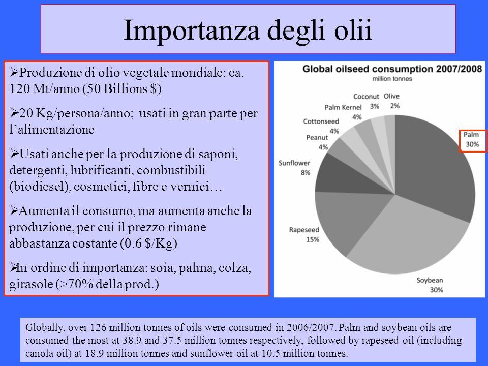 Importanza degli oliiProduzione di olio vegetale mondiale: ca. 120 Mt/anno (50 Billions $)