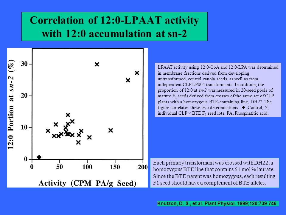 Correlation of 12:0-LPAAT activity with 12:0 accumulation at sn-2