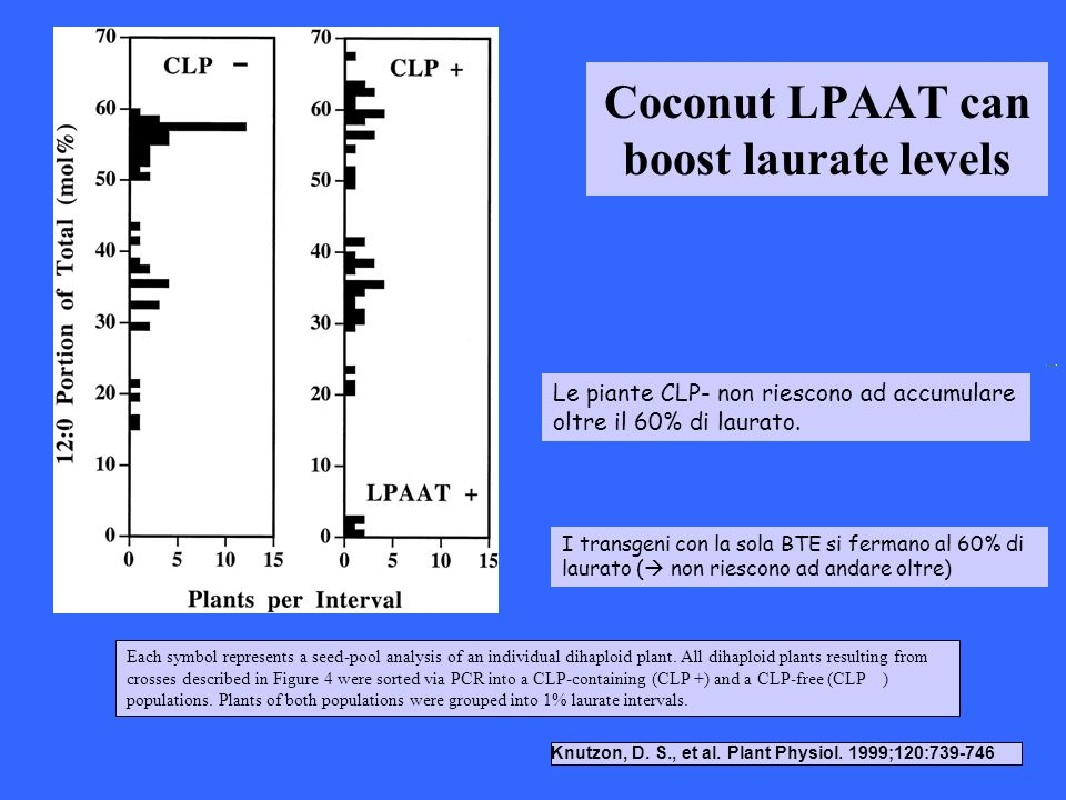 Coconut LPAAT can boost laurate levels