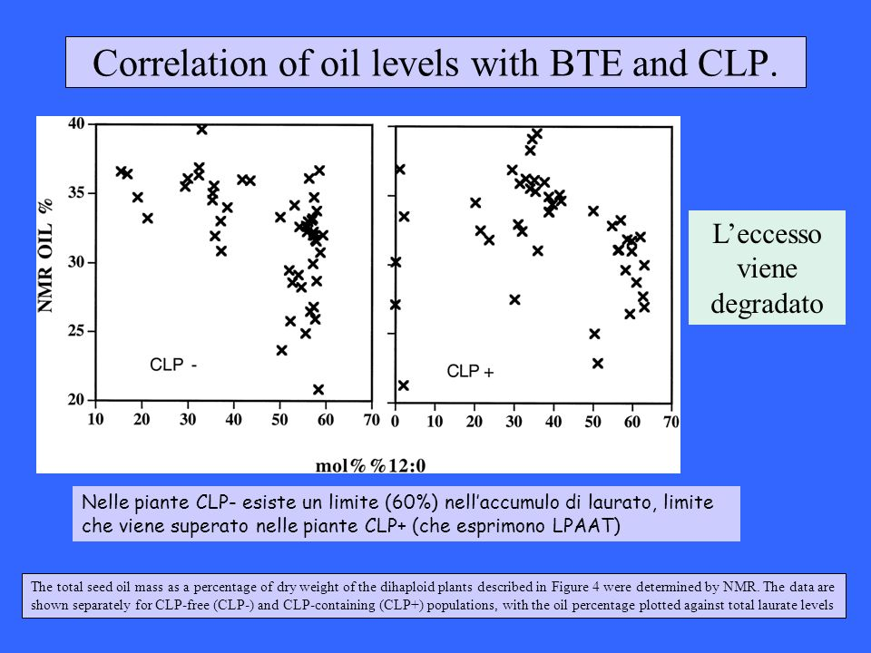 Correlation of oil levels with BTE and CLP.