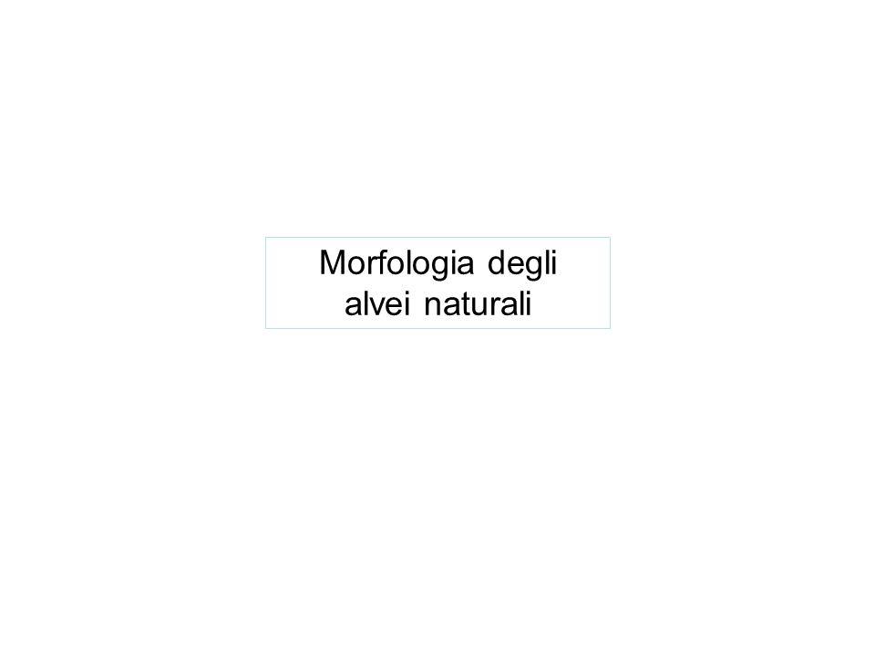 Morfologia degli alvei naturali