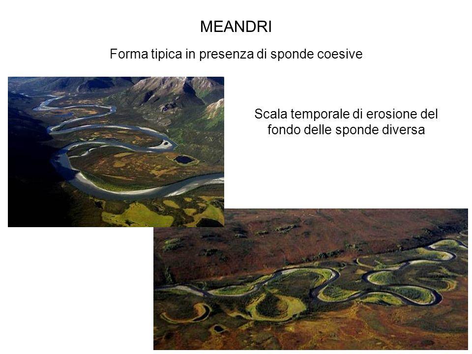 MEANDRI Forma tipica in presenza di sponde coesive