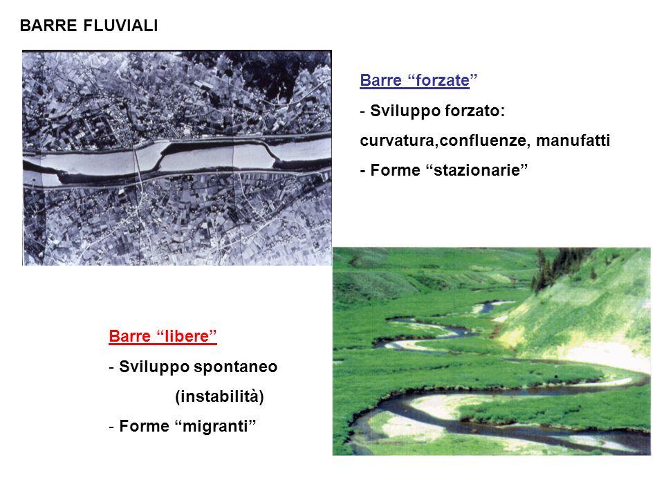 BARRE FLUVIALI Barre forzate Sviluppo forzato: curvatura,confluenze, manufatti. - Forme stazionarie