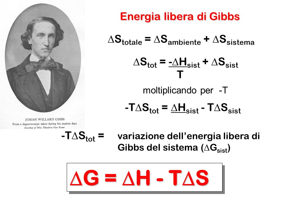 DG = DH - TDS Energia libera di Gibbs
