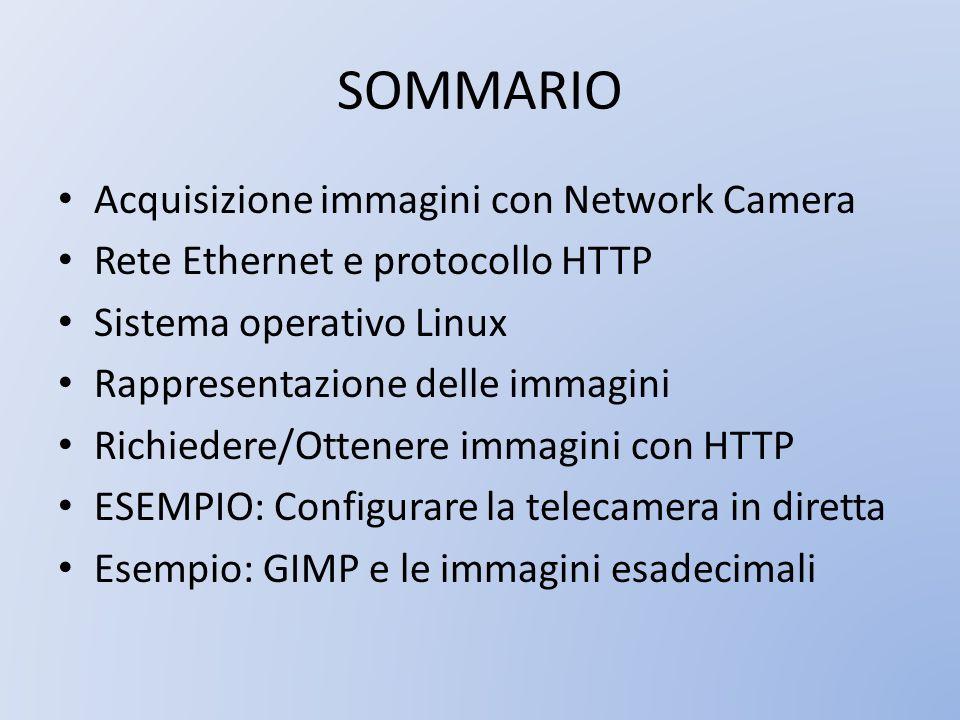 SOMMARIO Acquisizione immagini con Network Camera