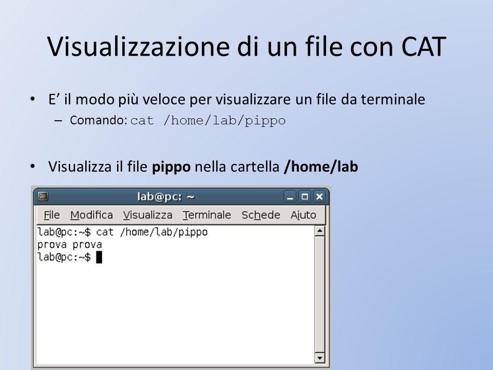 Visualizzazione di un file con CAT