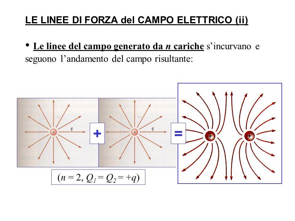 LE LINEE DI FORZA del CAMPO ELETTRICO (ii)
