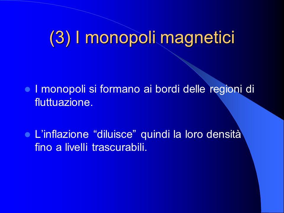(3) I monopoli magnetici