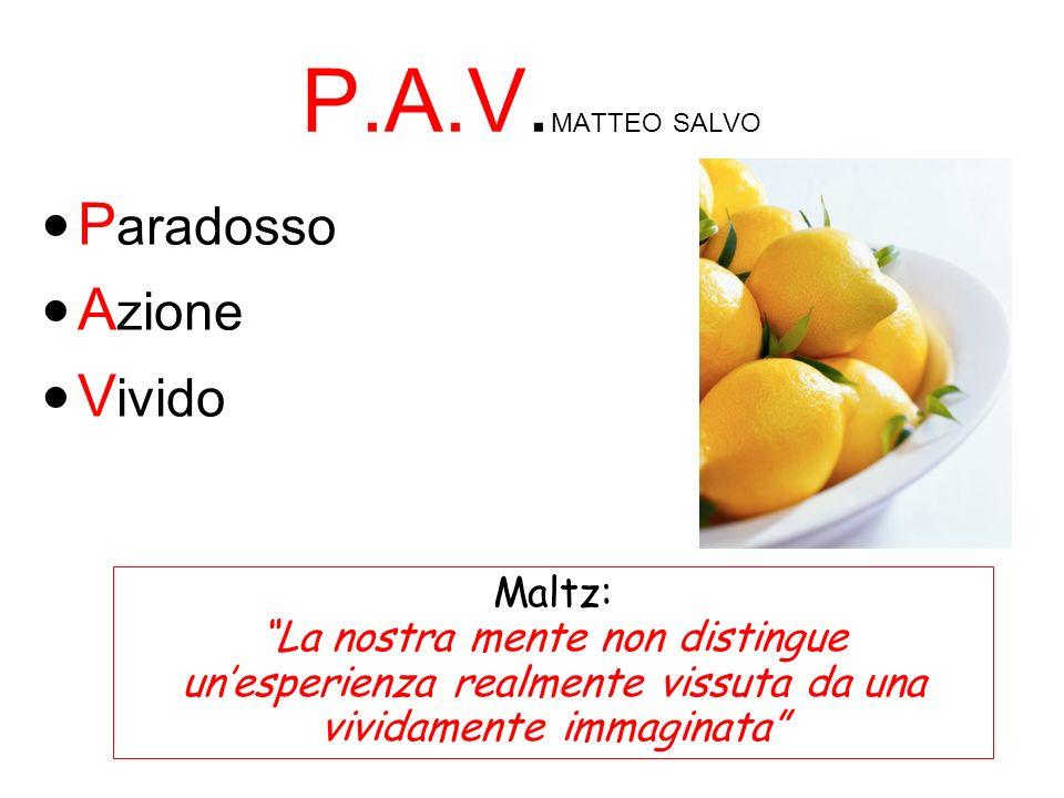 P.A.V.MATTEO SALVO Paradosso Azione Vivido Maltz: