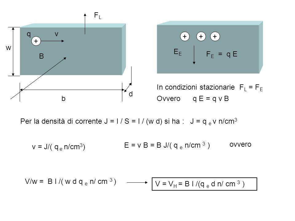 FLq. v. + + + + w. EE. FE = q E. B. In condizioni stazionarie FL = FE. d. b. Ovvero q E = q v B.