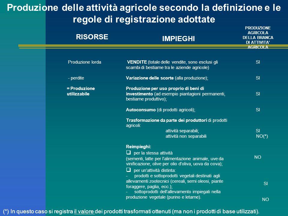 PRODUZIONE AGRICOLA DELLA BRANCA DI ATTIVITA' AGRICOLA