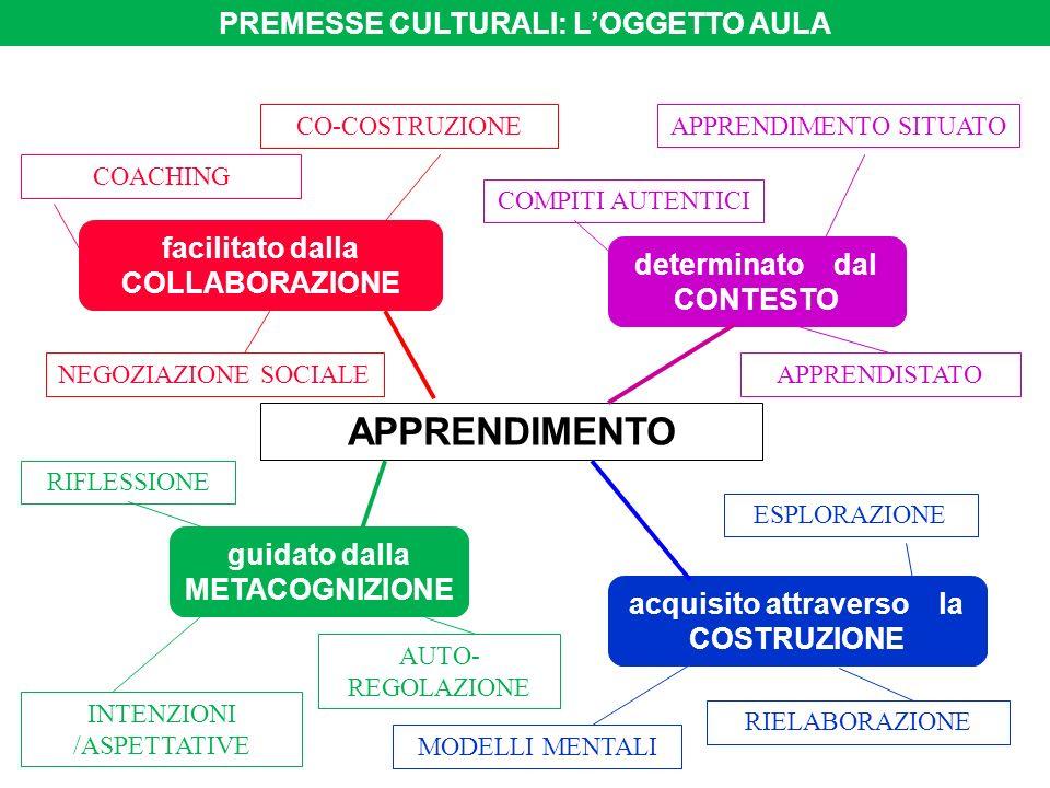 APPRENDIMENTO PREMESSE CULTURALI: L'OGGETTO AULA
