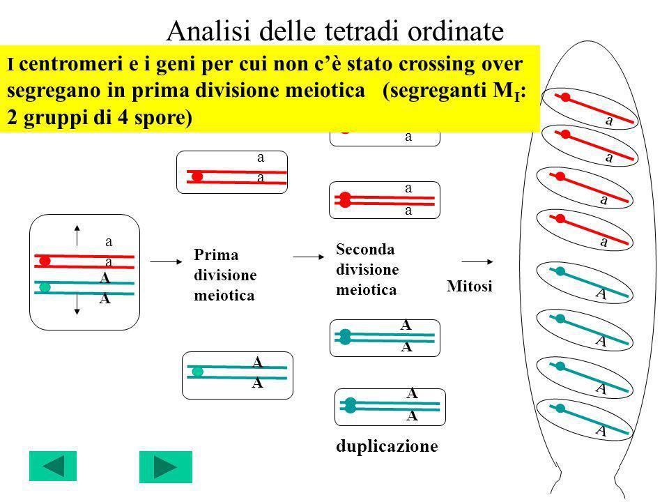 Analisi delle tetradi ordinate