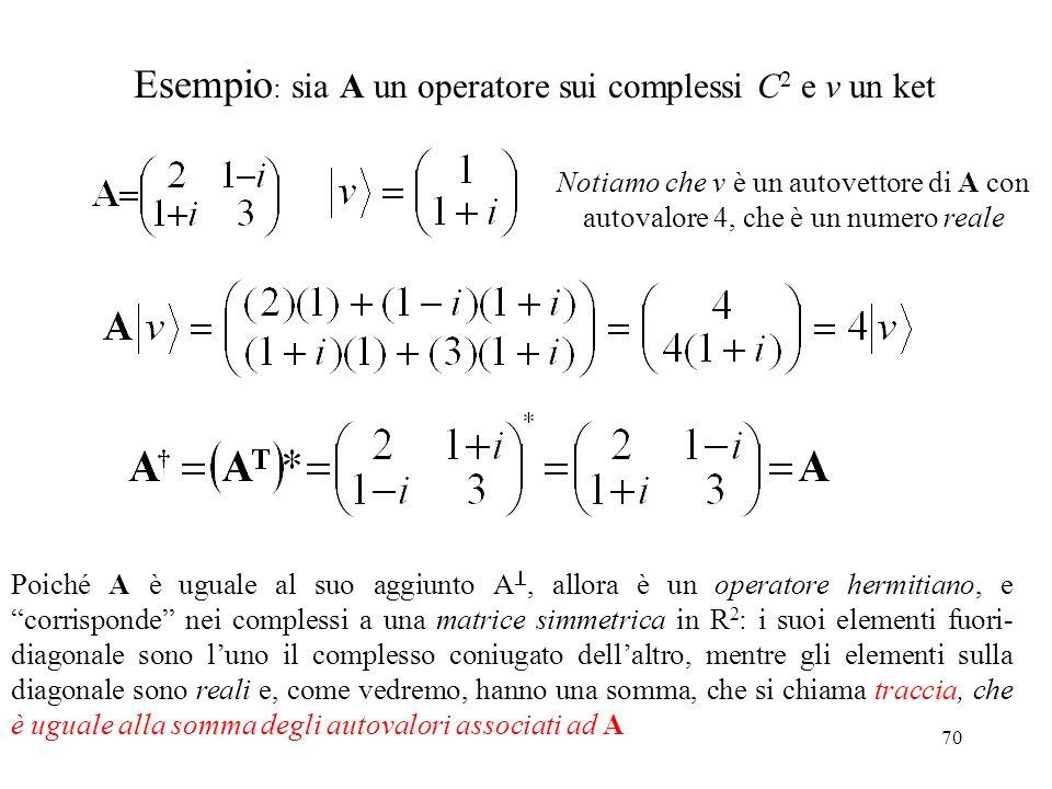 Esempio: sia A un operatore sui complessi C2 e v un ket
