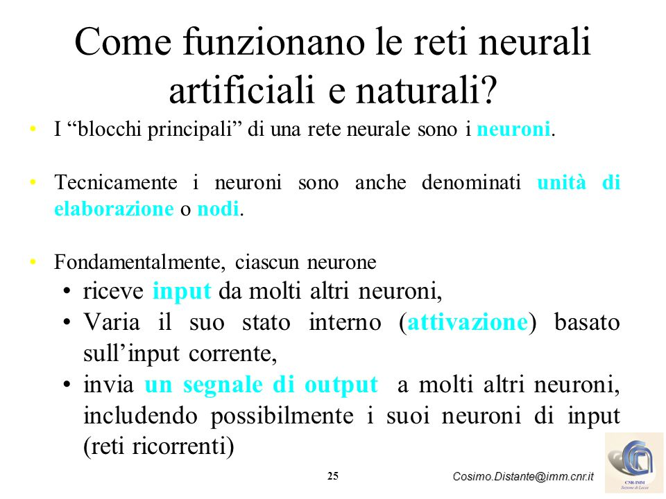 Come funzionano le reti neurali artificiali e naturali