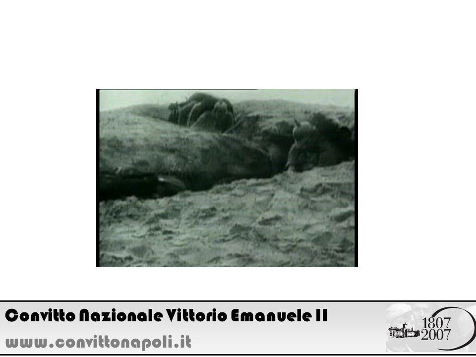 Convitto Nazionale Vittorio Emanuele II
