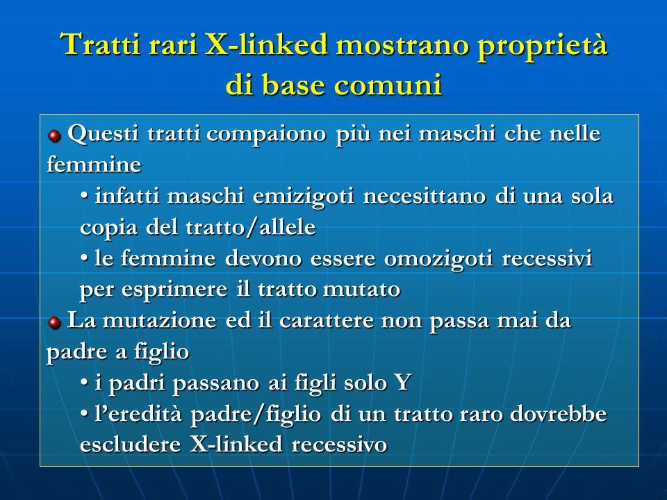 Tratti rari X-linked mostrano proprietà di base comuni
