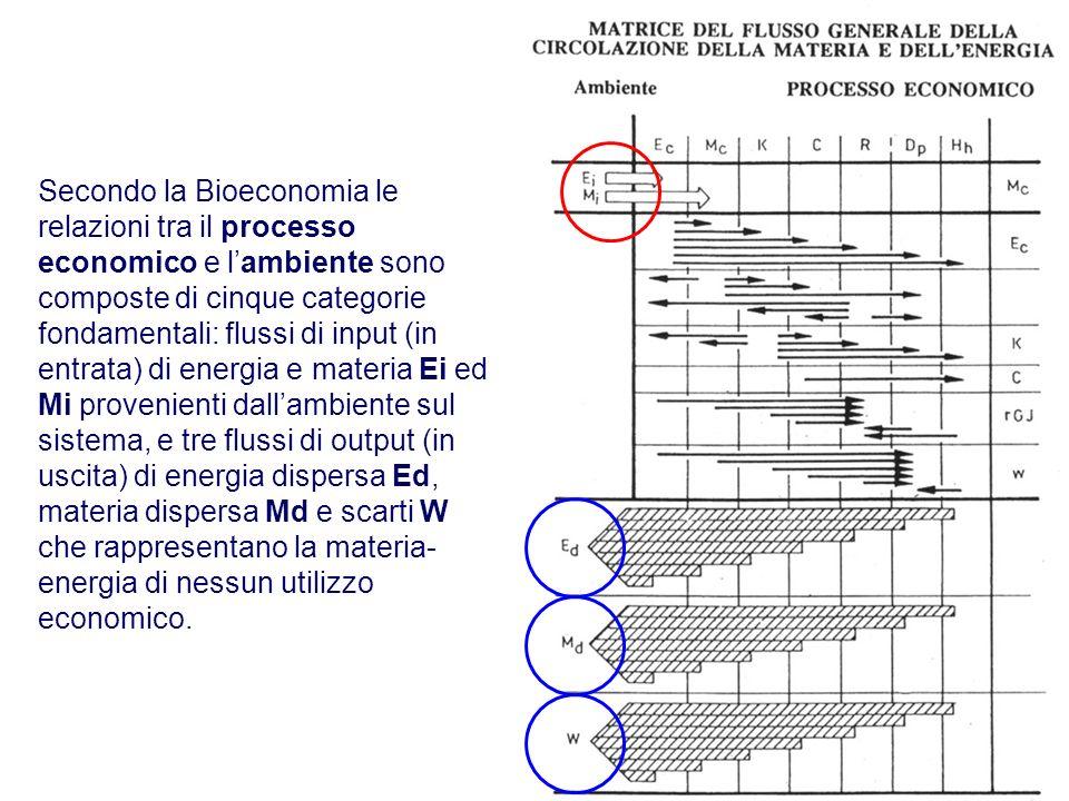 Secondo la Bioeconomia le relazioni tra il processo economico e l'ambiente sono composte di cinque categorie fondamentali: flussi di input (in entrata) di energia e materia Ei ed Mi provenienti dall'ambiente sul sistema, e tre flussi di output (in uscita) di energia dispersa Ed, materia dispersa Md e scarti W che rappresentano la materia-energia di nessun utilizzo economico.