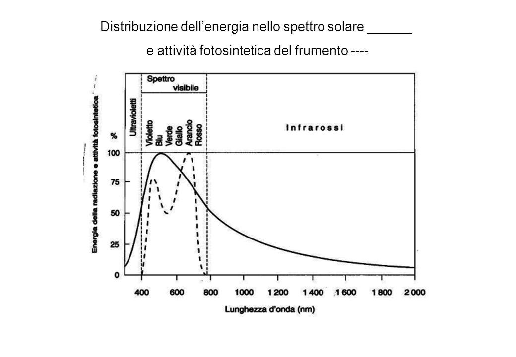 Distribuzione dell'energia nello spettro solare ______
