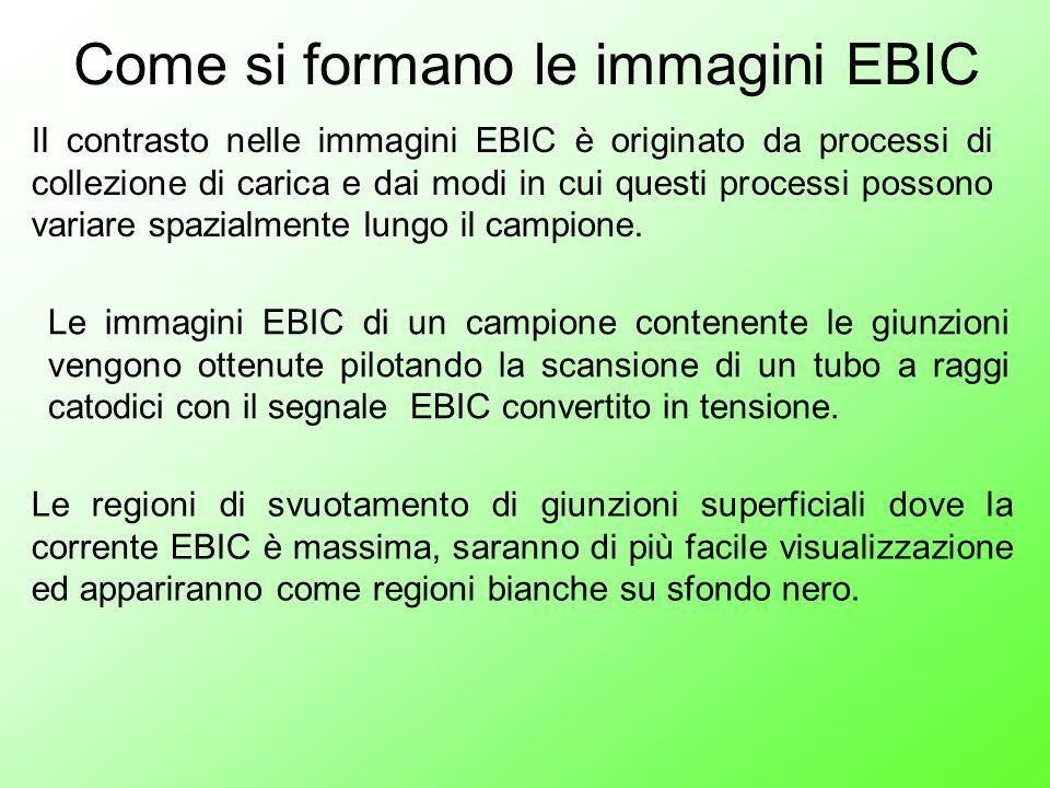 Come si formano le immagini EBIC