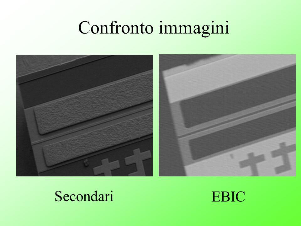 Confronto immagini Secondari EBIC
